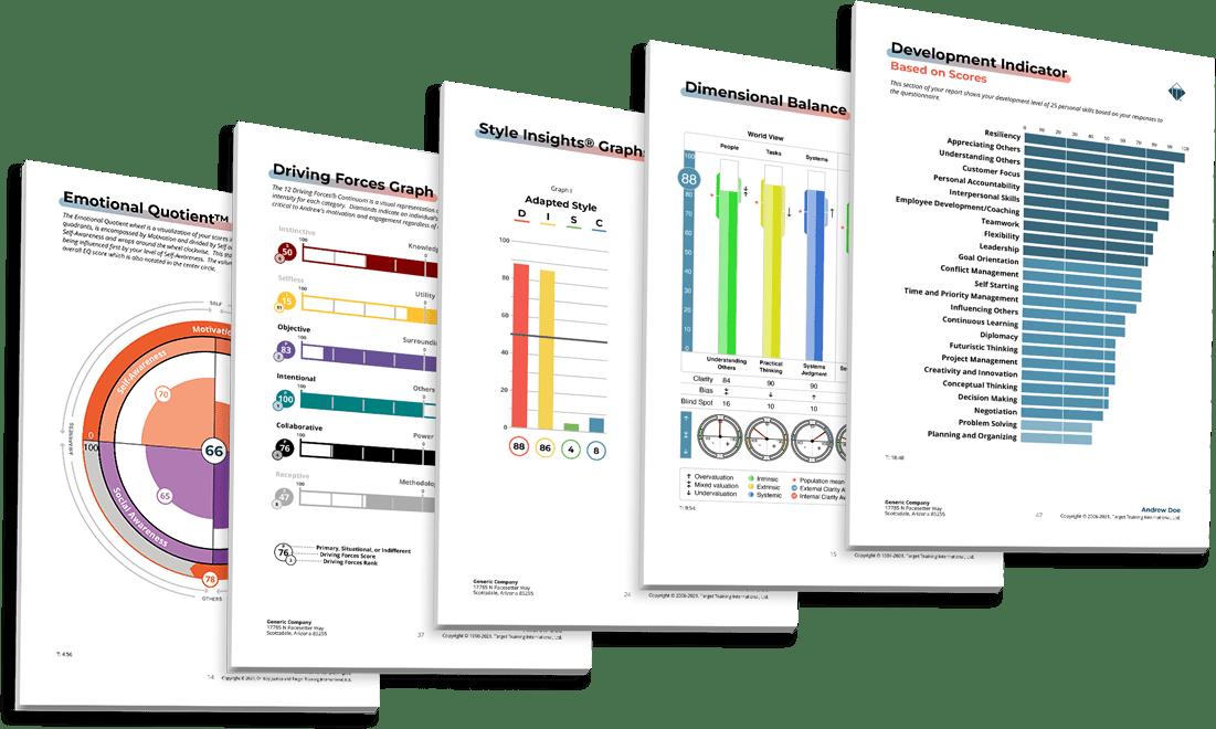 DISC Assessment, TriMetrix HD Assessment and 12 Driving Forces Assessment Samples