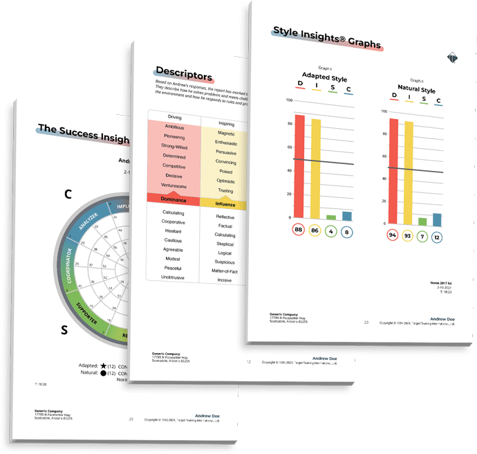 DISC Report Pages